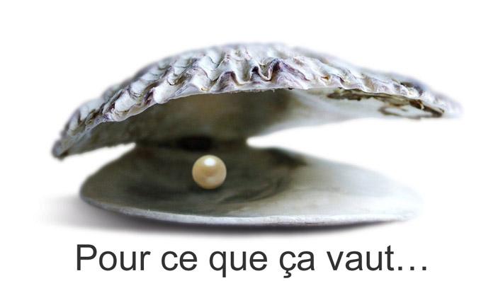 perle dans l'huitre - pour ce que ça vaut
